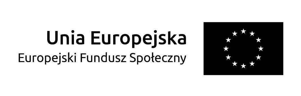 Unia Europejska EFS logo
